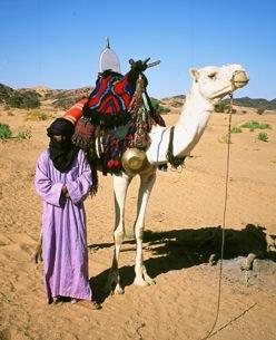 anja fischer imuhar tuareg kamels ttel. Black Bedroom Furniture Sets. Home Design Ideas