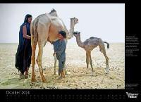 Das Brot der Sahara Nomaden